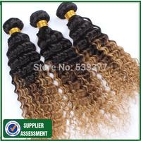 Wholesale malaysian virgin hair ombre deep wave 100g/bundle 3/4bundles per lot 100% human hair extension
