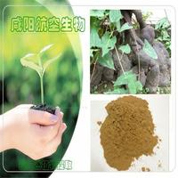 200g[Hot sell] 100% Natural Polygonum multiflorum, He Shou Wu extract powder 10:1