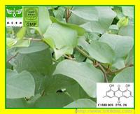 200g [Hot sell] Giant Knotweed Rhizome P.E 50%-98%