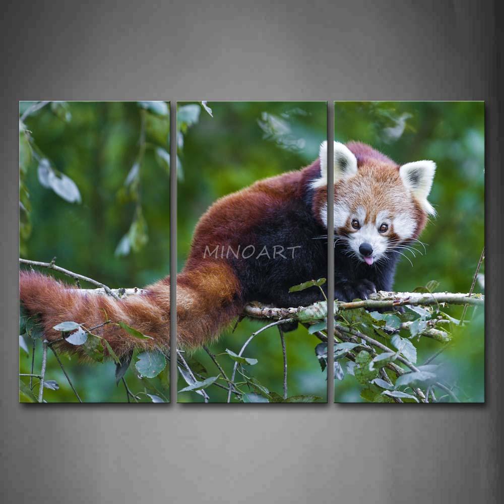 3 peça Wall Art Painting Panda vermelho Stand no ramo imagem de impressão na lona animais 4 The Picture Home Decor impressões petróleo(China (Mainland))