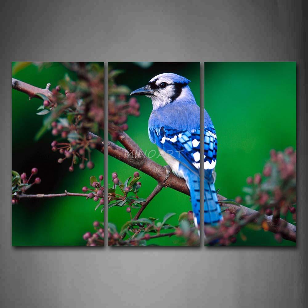 3 peça Wall Art pintura azul parada pássaro no ramo de impressão na lona o retrato Animal 4 Pictures óleo imprime para a decoração Home(China (Mainland))