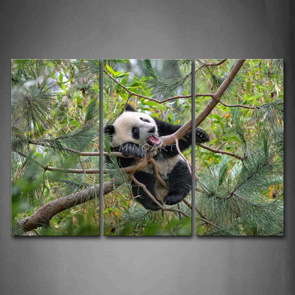 3 peça Wall Art pintura Panda subir na pinheiro ramo imagem de impressão na lona animais 4 The Picture Home Decor impressões petróleo(China (Mainland))