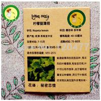 Lemon cat mint seed, Nepeta lemon - 20 particles/bag