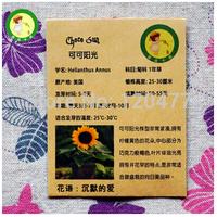 Cocoa sunshine dwarf sunflower seeds, Pan American dwarf sunflower seeds imported US - 5 seeds/bag