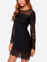 Novelty Long-sleeve Lace Mini Women Casual Dress vestido de festa Vintage Bodycon Dresses B5317 Fshow