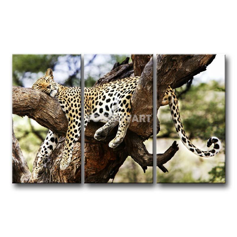 3 peça pintura em tela arte dormir Cheetah em ramo de árvore Pictures imprimir Animal a imagem Home Decor impressões petróleo(China (Mainland))