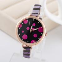 New Dial 2015 style women's Elegant watch wristwatches quartz Zebra Stap watch assorted colors women dress watch FP0101