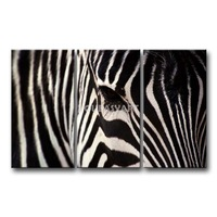3 Piece Black And White Painting On Canvas Wall Art Zebra Face Pictures Print Animal The Picture Decor Oil For Home Decoration
