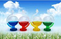 Free shipping Storm Glass Barometer Weather Forecast Bottle Rain or shine bottle
