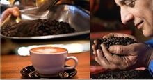 Coffee Beans New 2015 Food coffee gusto coffee beans Blue Mountain coffee 227 g Free shipping