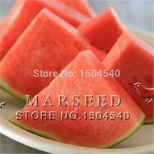 10 watermelon Seeds  Seedless watermelon sweet&juice very tasty easy-growing