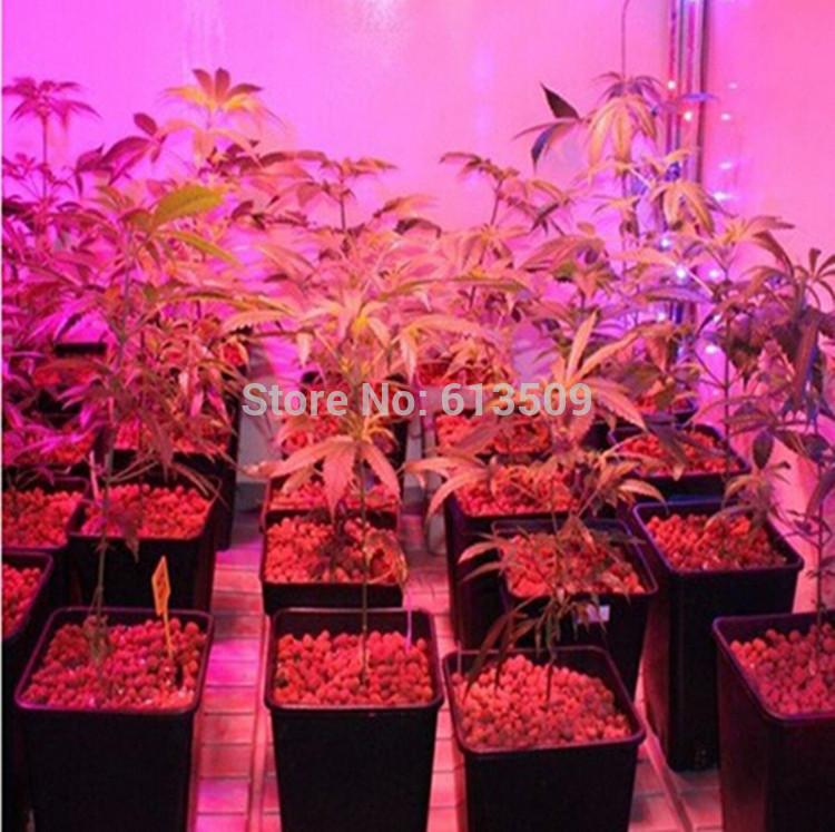 Освещение для растений 5W 3 2 E27 ac85/265v