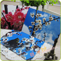 [EIGHT] Postcard /Greeting Cards Wholesale (8 pcs/set; 10 sets/lot) The plum blossom / For postcrossing