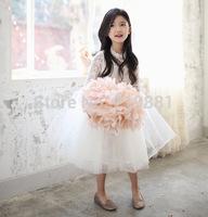2015 Girls spring lace princess tutu dress , girls clothing , wedding dress girl , 5pcs/lot   XFJ01
