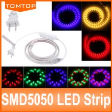 Hot sell! RGB/Warm White/Red/Blue Waterproof 1M 5050 Led Strip Flexible Light 60led/m 60 LED SMD DC12V LED Strips EU US Plug(China (Mainland))