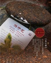 2014YR Chang Tai YouYuYi Beeng Cake 100g YunNan Organic Pu er Ripe Tea Weight Loss Slim