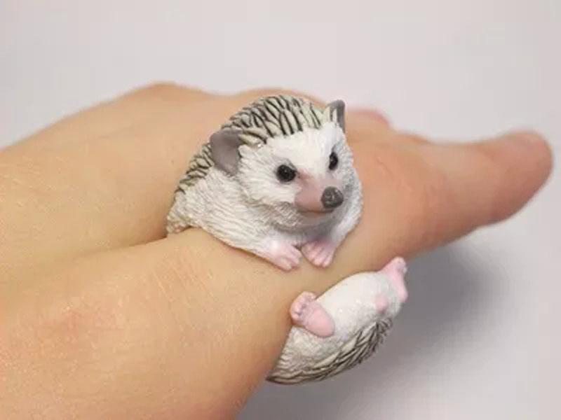 I Want To Buy A Hedgehog