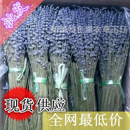 Organic Lavender a Lavender Flowers Organic