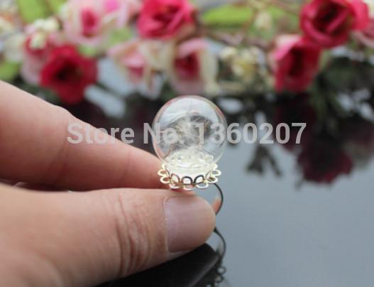 12pcs/lot 20mm Real dandelion ring ,dandelion seed jewelry , good luck ring , dandelion wish(China (Mainland))