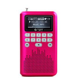 Portable card speaker webcasts walkman lv290 old-age radio(China (Mainland))