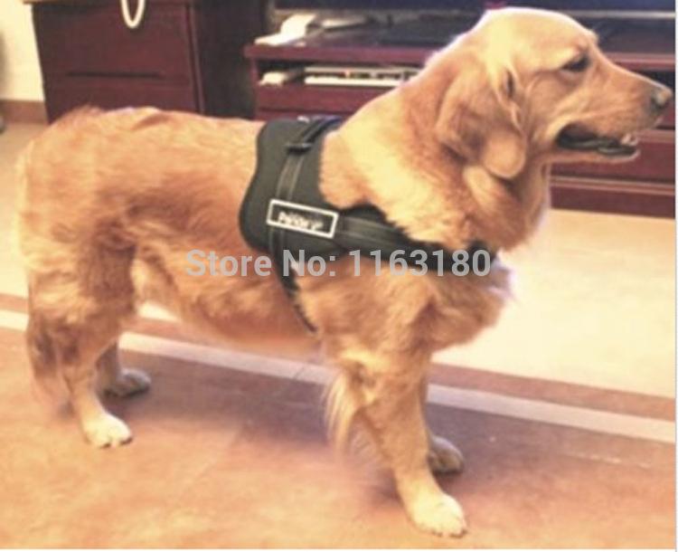 Ошейники и Поводки для собак Brand new 60PCS/s M l XL xXL ошейники и поводки для собак foam cotton pet collars 3 xs s m l xl xs s m l xl