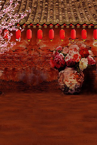 300CM*200CM Chinese style flower lantern Adobe house backgrounds for photo studio backdrops10ft length with 6.5ft width 2106(China (Mainland))
