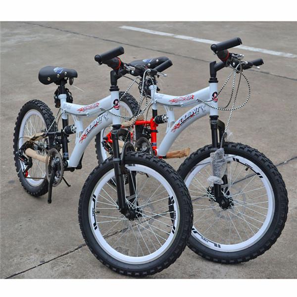 20Inch 21Speed MTB Bicycle Double Disc Brake Bicycle Bicicleta Road Bike(China (Mainland))