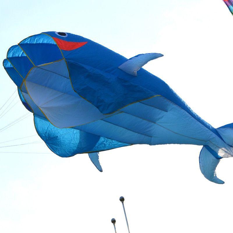 Воздушный змей OEM 3D FraDTZEess 100' DTZE #56397 Dolphins Kite simba воздушный змей история игрушек 7248276
