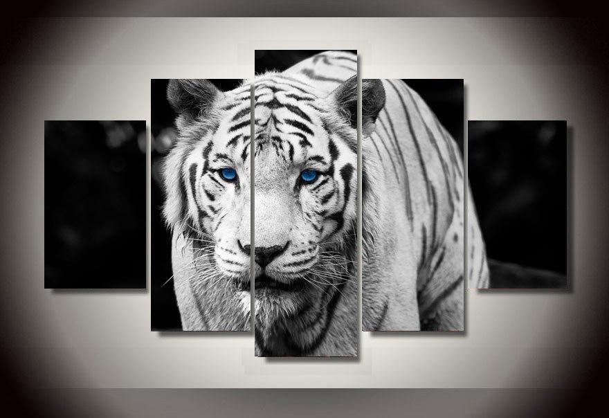 Achetez en Gros tigre blanc affiche en Ligne à des Grossistes tigre blanc aff