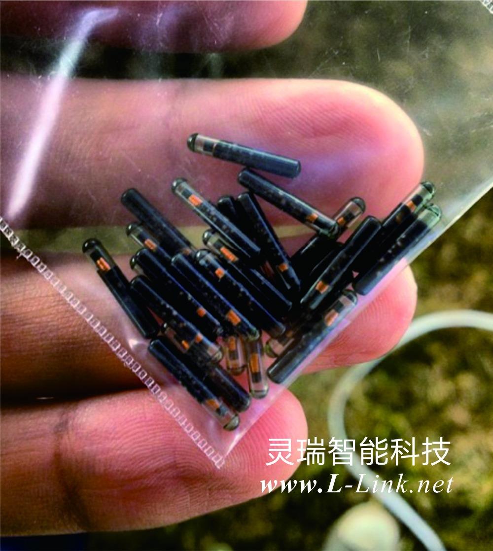 EM 4150 134.2Khz, normal glass tracking Rfid Smart Tags (OEM, ODM)(China (Mainland))