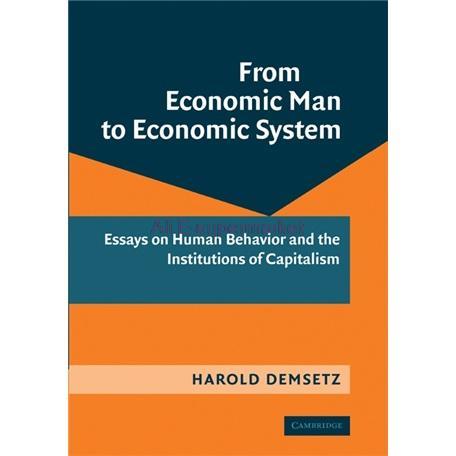 essay economic