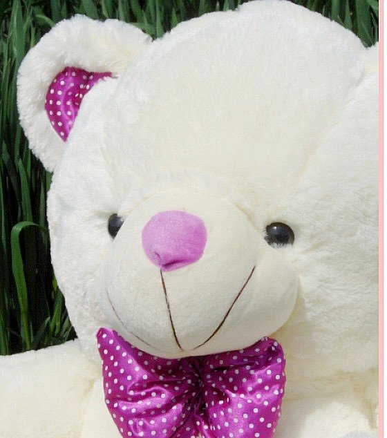 Wholesale - Genuine plush teddy bear toy teddy bear cute couple bears special birthday gift ideas 1.2m(China (Mainland))