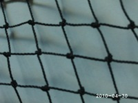 "bird netting, knotted twine, 3/4"" holes, black color,wholesale, retail"
