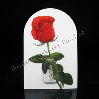 Factory Direct Sales! 10pcs/lot Magic wall pothooks goods for household decoration