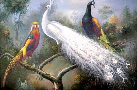 """A pintura a óleo ANIMAL 24 """" X36 """" do PÁSSARO dos animais selvagens do pavão garantiu o transporte livre de 100%"""