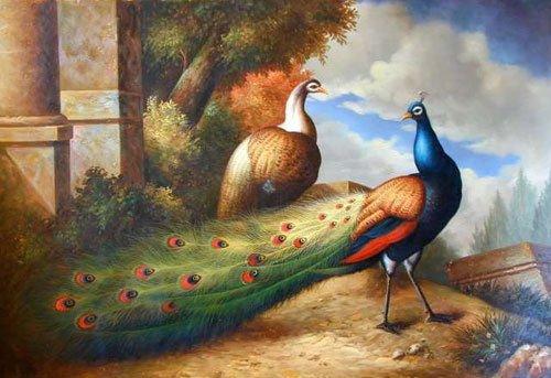 """Pintura a óleo de Repro dos artesanatos: O pavão bonito 24x36 """" garantiu o transporte livre de 100%"""