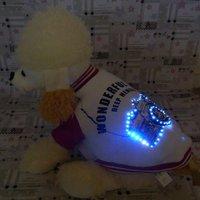 2011 new fashion,LED  flashing dog collar .dog leash,dog harness,Christmas dog gift,  mix wholesale 50pcs/lot