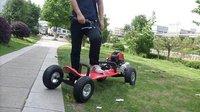 Gas skateboard 49cc gasoline powered scooter motorized skateboard,hot selling!!