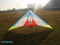 Rainbow bird 240cm 2 line carbon stunt kites,
