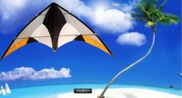 Kite/Stunt Kite/Outdoor sport game,Dual line Kite 2013 New Year Style, Holiday Gift,