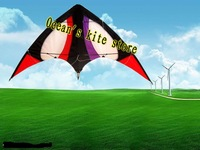 Good Kite/Stunt Kite/Outdoor sport game,Dual line Kite 2013 New Year Style, Holiday Gift,