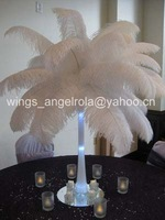 """CLEARANCE SALE!! wholesale 100pcs/lot 12-14"""" Ostrich Feather Plume FREE SHIPPING"""