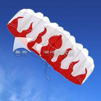 SALE 2 m 2 Line Stunt Parafoil POWER Sport Kite