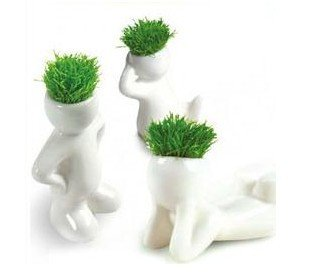 50pc Creative Gift Plant Hair man Plant Office Mini Plant Fantastic Home Decor office green plant. 50% shipping discount granted(China (Mainland))
