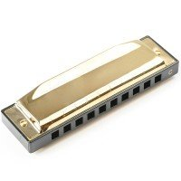 Free Shipping -  Playing Harmonica Chrome Plated C Key 10 Hole with Carrying Case On Sale For Beginners Learner causal play show