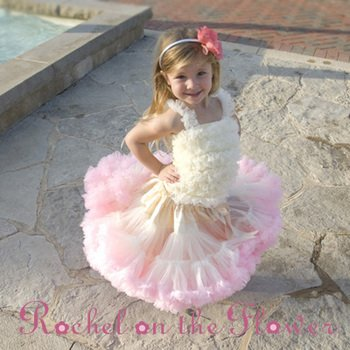 Baby girls tutu skirts Baby girls Skirts baby Girl Ra Ra Skirt Baby girl Jumpers Baby Girls bouffant 20pcs/lot(China (Mainland))