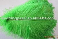 "wholesale FREE SHIPPING 100pcs/lot 14-16"" Ostrich Feather Plume"