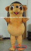 The Hedgehog costume/Rrinaceus mascot costume