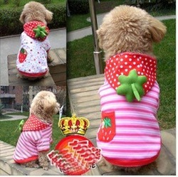 sweety dog winter clothes strawberry, puppy hoody coat, dog padding jacket, pet winter clothing(size XS--XXL)