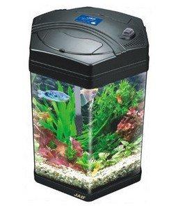 Online Get Cheap Octagon Fish Tank